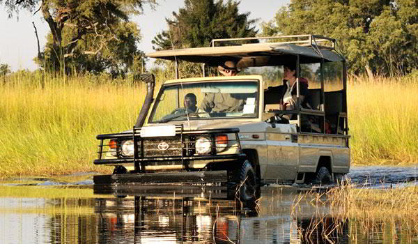 Pure Botswana - 7 days from $3795